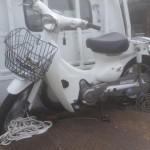 常滑市阿野町 バイク買取 リトルカブ