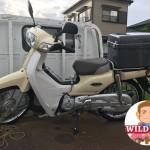 安城市東栄町でバイク買取 スーパーカブ(AA04)