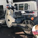 名古屋市緑区鳴海 バイク買取 スーパーカブ(AA01)