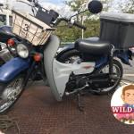 東海市荒尾町 バイク買取 バーディ50 SUZUKI