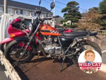 刈谷市東境町 バイク買取、SUZUKIグラストラッカー10年放置