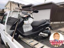 知多市新舞子 バイク買取 原付ディオ(AF68)