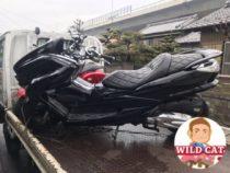 清須市西枇杷島 バイク買取 YAMAHA マジェ250(SG20)改造車