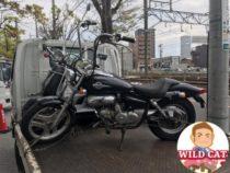 熱田区六野 バイク買取 原付マグナ50(不動車)