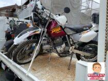 豊橋市多米中町 バイク買取 XR250 長期放置不動車タンク凹み